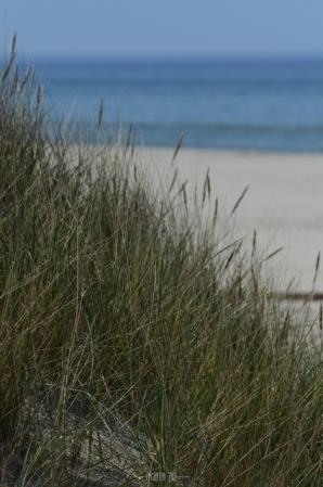 Słowiński National Park: dunes, beach and Baltic Sea