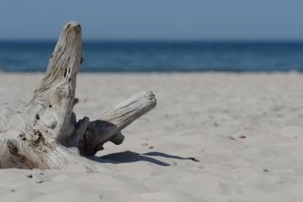 Słowiński National Park: beach and the Baltic Sea