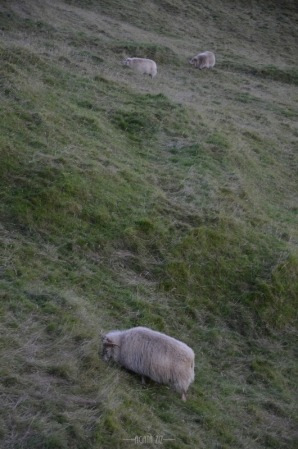 Iceland: Southern Region - Fimmvörðuháls