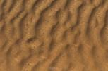 DSC_1189a