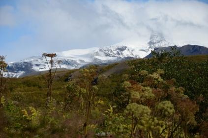 Skaftafell: view to Hvannadalshnúkur