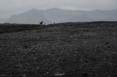 Near Sólheimasandur plane wreck