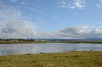 Seltjarnarnes: Bakkatjörn lake
