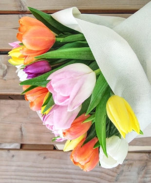 dubai-flowers-tulips-40thousandkm-05219-2