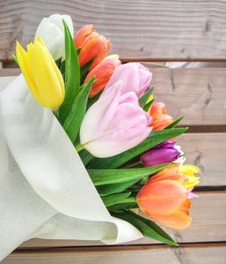 dubai-flowers-tulips-40thousandkm-05220-21