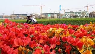 NAS Cycling and Running Path - Dubai, UAE