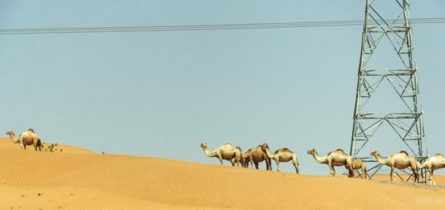 Umm Al Quwain, UAE