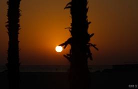 Umm Suqeim Public Beach - Dubai, UAE