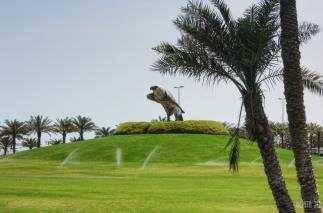 Falcon Muharraq - Bahrain