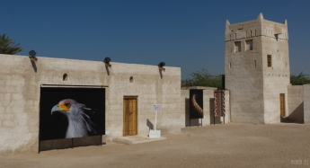 uae-rak-al-hamra-40thousandkm-14945-2