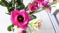 uae-dubai-flowers-40thousandkm-210459-2