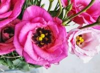 uae-dubai-flowers-40thousandkm-210927-2