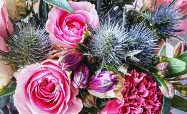 uae-dubai-flowers-40thousandkm-211542-21