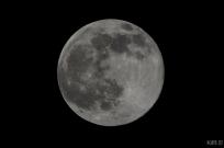 uae-dubai-moon-40thousandkm-217281-21